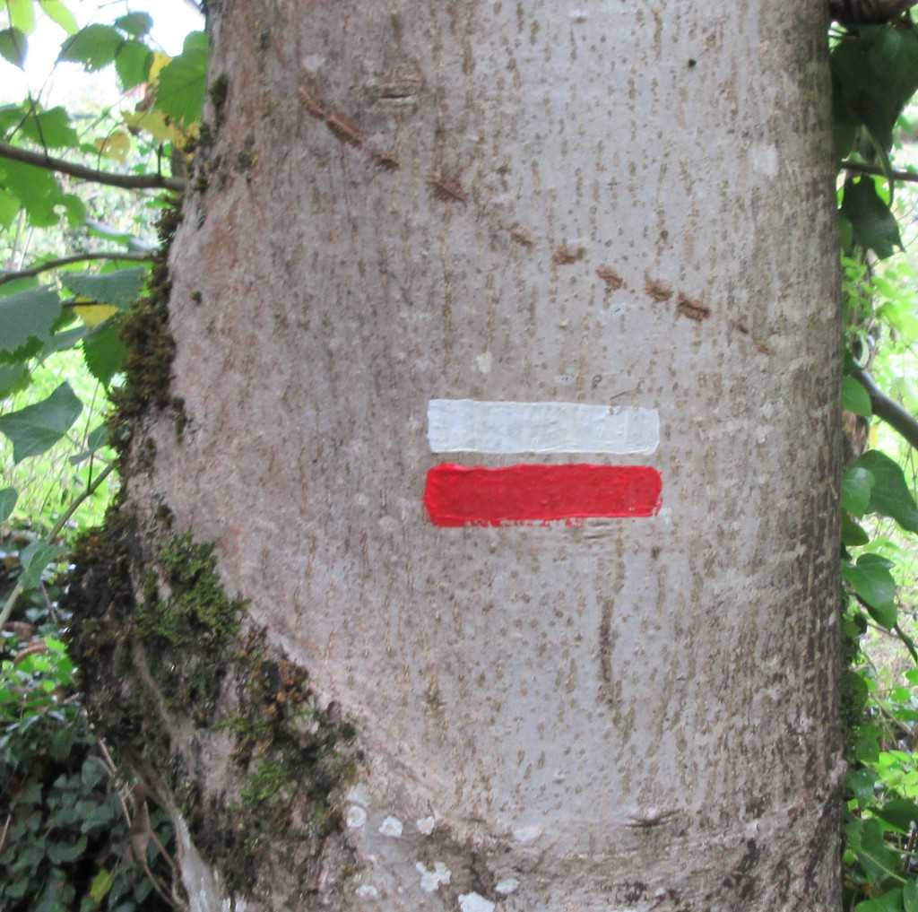 GR10 trail markings